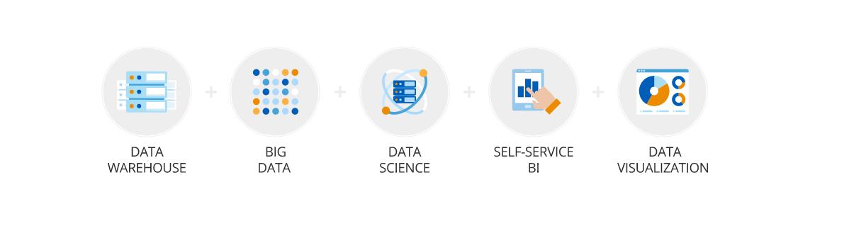 data insight